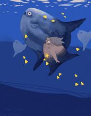 mola mola mermaid