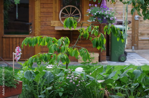Hochbeet An Der Terrasse Stock Photo And Royalty Free Images On