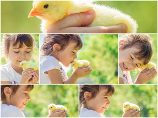 The child holds a chicken in his hands. The girl and the bird. Collage. Selective focus.