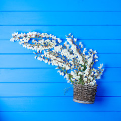 Beautiful fresh ranunculus flowers on wooden background