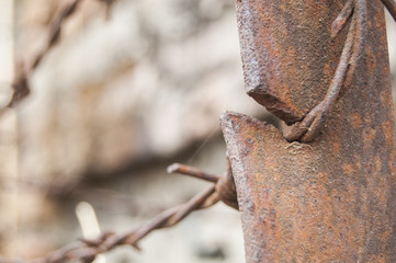 Wallpaper macro Rusty Barbed wire right position cut