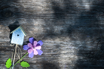 Wooden background, birdhouse and flower, summer theme, gardening, spring