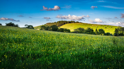 Meadows and hill on springtime in Forest of Bowland, blue sky and clouds on afternoon sunlight Lancashire, England UK