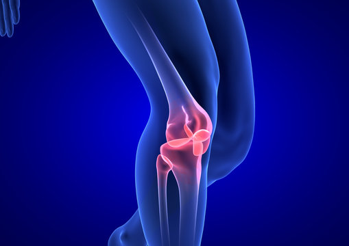 Knee Pain. Blue Human Anatomy Body 3D render on blue background