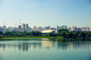 Observing the city of Sao Paulo in the Ibirapuera Park - Brazil.