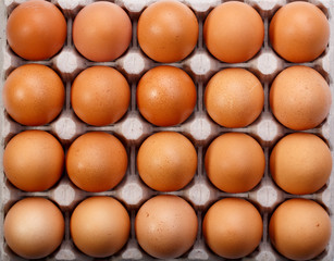 Pack of twenty brown chicken eggs in cardboard container. Top view