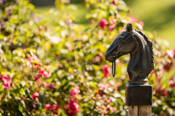 Horse head statue in Garden