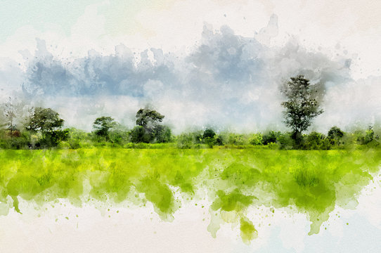 Landscape of Thailand with green field and Forest. Aquarelle digital painting effect.