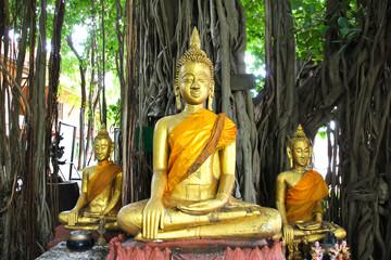 Buddha statue beautiful of Wat Kae Temple at Suphanburi, Thailand.
