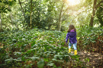 Young girl walking through forest, rear view