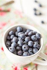 Big White Bowl Full of Ripe Blueberries on the White Wooden Background