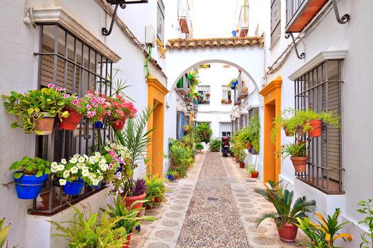 Patio à Cordoue, Andalousie