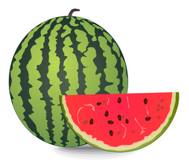 water-melon vector eps 10