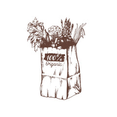 Vector organic vegetables poster, logotype. Farm fresh eco products illustration. Hand sketched paper bag with greens