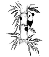 The monochrome hand drawn image of panda cub on bamboo tree. It can be used as a decoration of different production for animals, other goods and ads.
