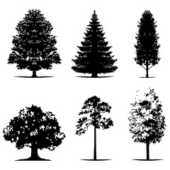 various of vector tree silhouettes in dark black color