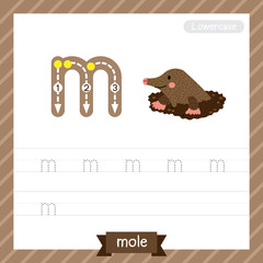 Letter M lowercase tracing practice worksheet with mole for kids learning to write. Vector Illustration.
