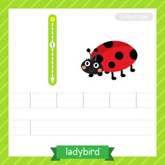 Letter L lowercase tracing practice worksheet with ladybird for kids learning to write. Vector Illustration.