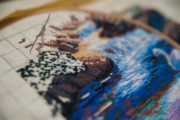 Handmade - embroidery threads on the canvas of the picture. Embroidery. Needle with threads and a pattern of them