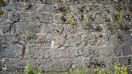 Alte Wehrmauer