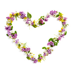 Frame made of various wildflowers in the shape of a heart on a white background..