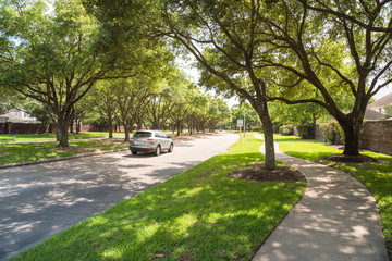 Side view of asphalt road, street in suburban residential area with lot of green trees in Katy, Texas, US. America is an excellent green and clean country. Environmental and transportation background. Fotomurales
