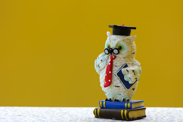 Earthenware figurines, decorative figurines, owl, isolated on a yellow background