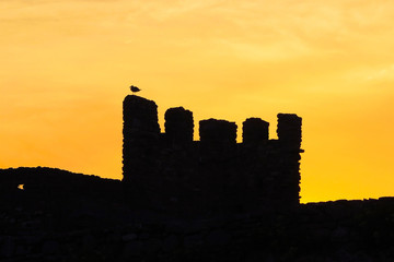 silhouette of bird atop castle wall at sunset sunrise