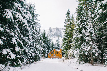 Cozy log cabin tucked in woods covered with snow