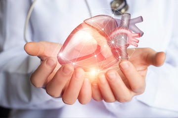 Cardiologist supports the heart .