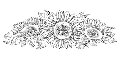 Vector composition with outline open Sunflower or Helianthus flower and leaves isolated on white background. Floral elements in contour style with ornate Sunflowers for summer design or coloring page.