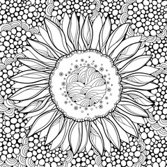 Vector composition with outline open Sunflower or Helianthus flower on the abstract background. Floral elements in contour style with ornate Sunflower for summer design or adult coloring page.