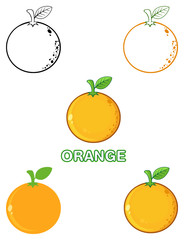 Orange Fresh Fruit With Green Leaf Cartoon Drawing 2.  Set Collection Isolated On White Background