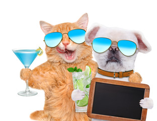 Cat and dog wearing sunglasses relaxing in the white background. Cat and dog holds blank blackboard .