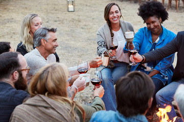 Group of friends toasting red wine while sitting around fire pit