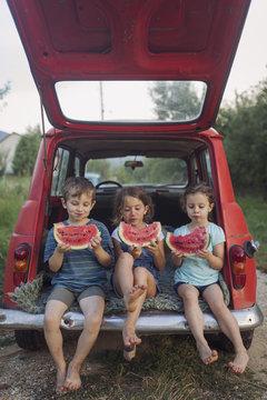 Watermelon , children's summer refreshment
