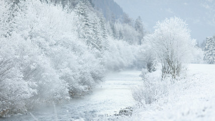 Winter river with snow covered nature