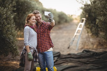 Smiling young couple taking selfie at olive farm