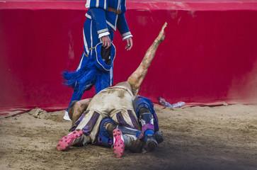 Calciante bloccato a terra dall'avversario durante la partita di calcio storico fiorentino