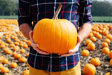 Man holding a pumpkin in a field
