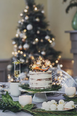 Delicious Christmas Cake Decorated With Sparklers