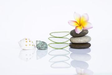 Spa decoration concept, Plumeria flower over zen stone with fresh slice of Aloe Vera and seashell isolate on white background