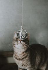 mirror ball ornaments