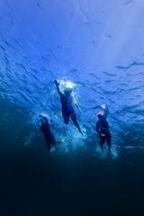 Triathlon Race Leaders During Swim Stage Underwater Athletes