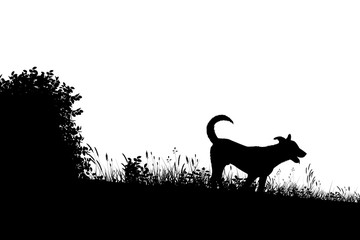 Meadow dog silhouette