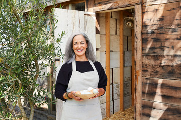 Senior woman with grey hair gathering eggs from backyard chicken coop
