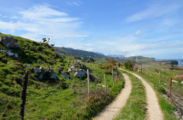 Idyllic panorama path in Asturias, Camino de Santiago, Spain