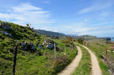 Idyllic panorama path in Asturias, Camino de Santiago, Spain