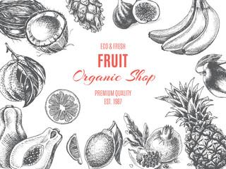 Vector illustration sketch - fruit. Card Menu organic shop. vintage design, banner.