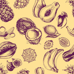 Vector illustration sketch pineapple, banana, dragon fruit, citrus, coconut, papaya, fig.